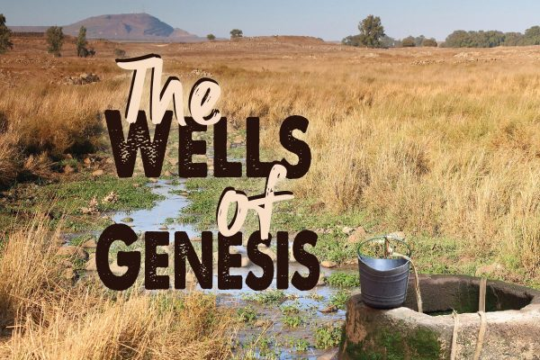 The Wells of Genesis